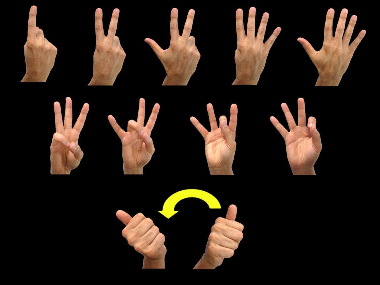 American Sign Language Numbers 1 to 10 Google image from http://www.lifeprint.com/asl101/pages-signs/n/numbers.htm