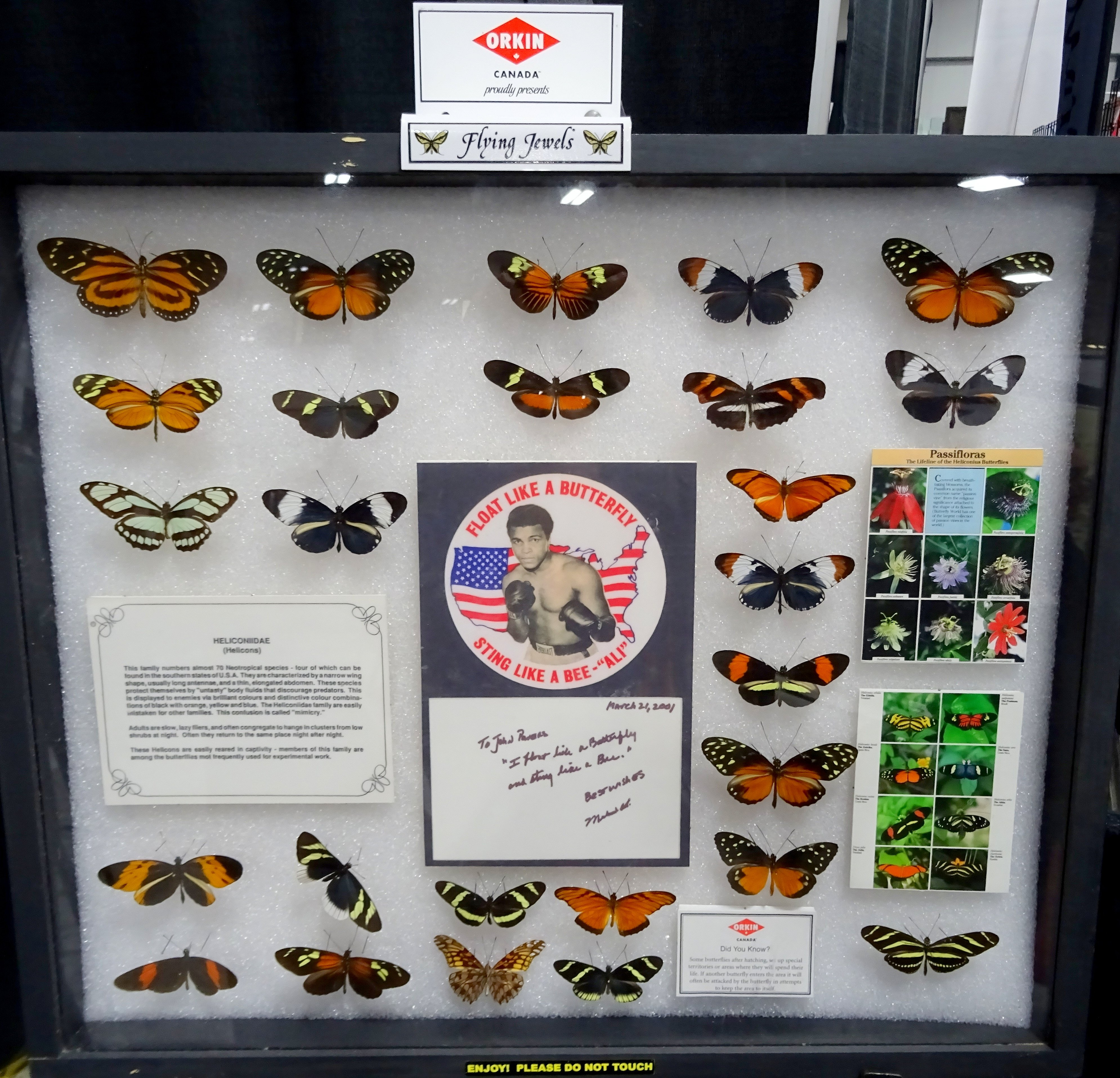 MuhammadAli quote at Butterfly Display by Orkin Canada, 15-17 April 2016
